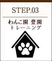 STEP03 しつけ方をレクチャー