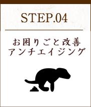 STEP04 実際にトレーニング